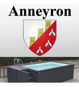 Anneyron (26) Container piscine 5M25x2M55x1M26