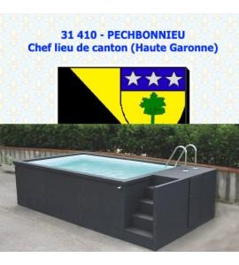 Container piscine mobile 5M25x2M55x1M26 - 31410 Pechbonnieu