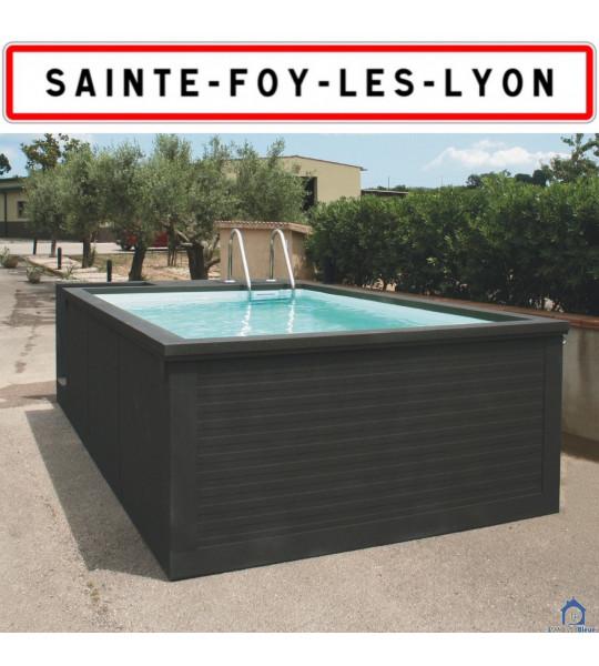 Container piscine sans travaux 5M25x2M55x1M26 Sainte-Foy-lès-Lyon (69202)